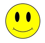 SmileyFace01 (160 x 151)