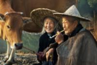 ElderlyCouple 5