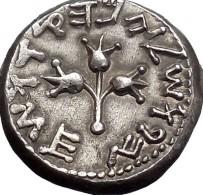 Coin_ancientJewish01 (203 x 195)