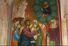 Zacchaeus01 (241 x 164)