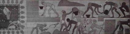 MosesSalvesWorking01 (426 x 114)